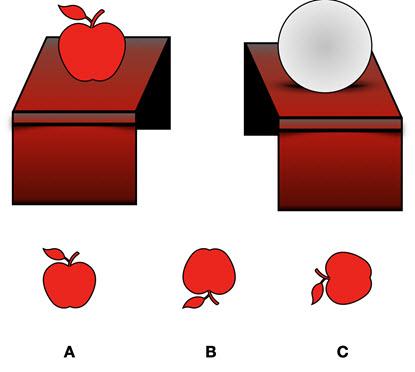 Mechanical Reasoning Aptitude Test Question 4